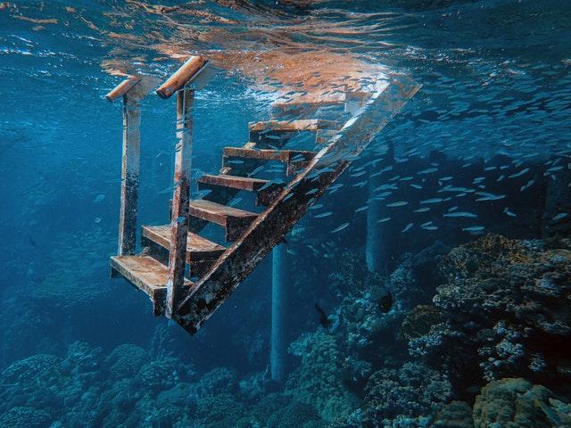 Schody, more, ryby